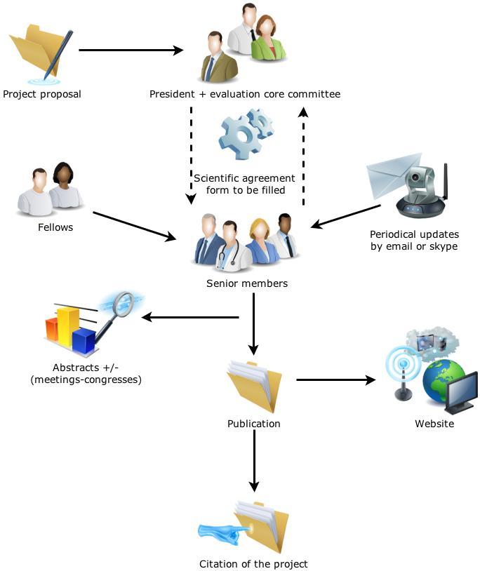 SIRIO-MEDICINE organizational structure